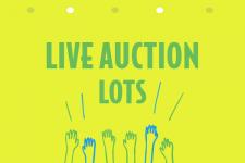 Live Auction Lot 2017